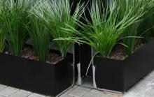 plantas-y-jardineria