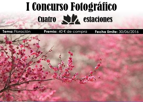 Concurso Primavera